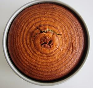 Zebra Cake | Fae's Twist & Tango