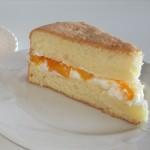 Chiffon Cake - Fae's Twist & Tango