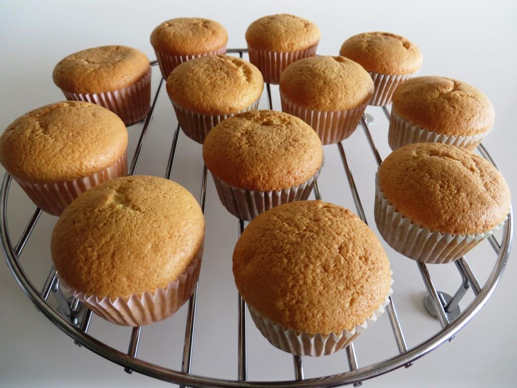 Sponge Cupcakes | Fae's Twist & Tango