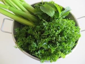 Khoresh'e Karafs • خورش کرفس • Celery Stew| Fae's Twist & Tango